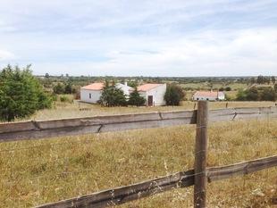 Ouriqué - PORTUGAL