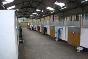 Internal Stables view 2